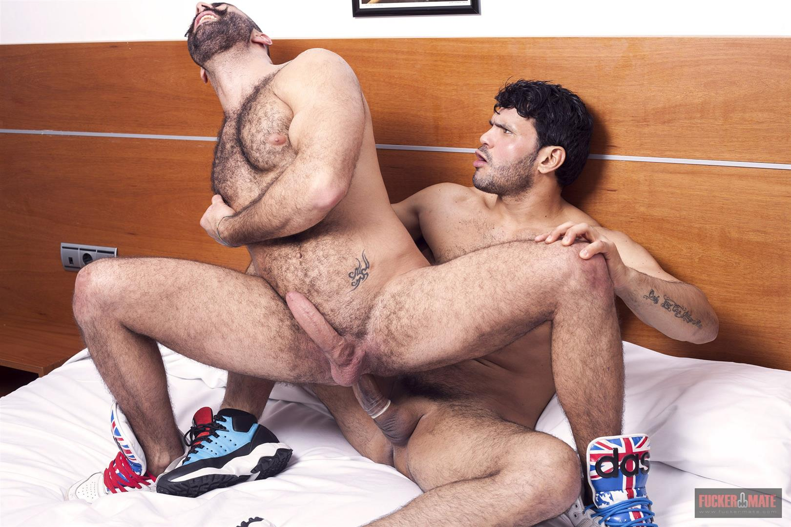 rough fucking gay hairy