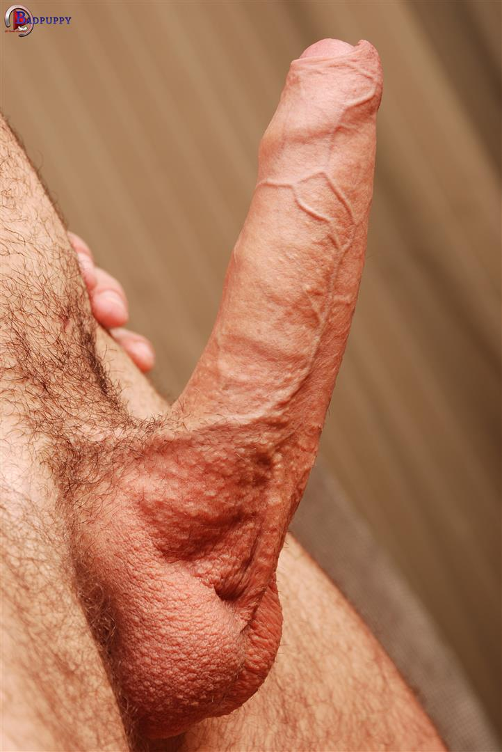 image Uncut cock gay jack and cumming white trash