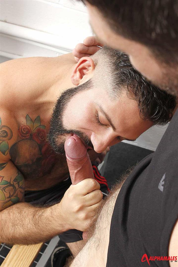 Alphamales-Alessandro-Del-Toro-and-Craig-Daniel-Hairy-Muscle-Jocks-Fucking-With-Big-Uncut-Cocks-Amateur-Gay-Porn-03 Hairy Muscle Jocks Fucking In The Locker Room With Big Uncut Cocks